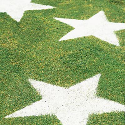 stars-on-lawn-m