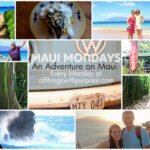 Maui Mondays: Rainbow Eucalyptus Trees