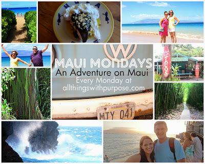 Maui Mondays: Rainbow Eucalyptus Trees