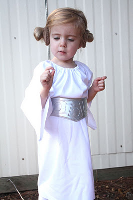 sc 1 st  All Things With Purpose & Princess Leia Costume Ideas