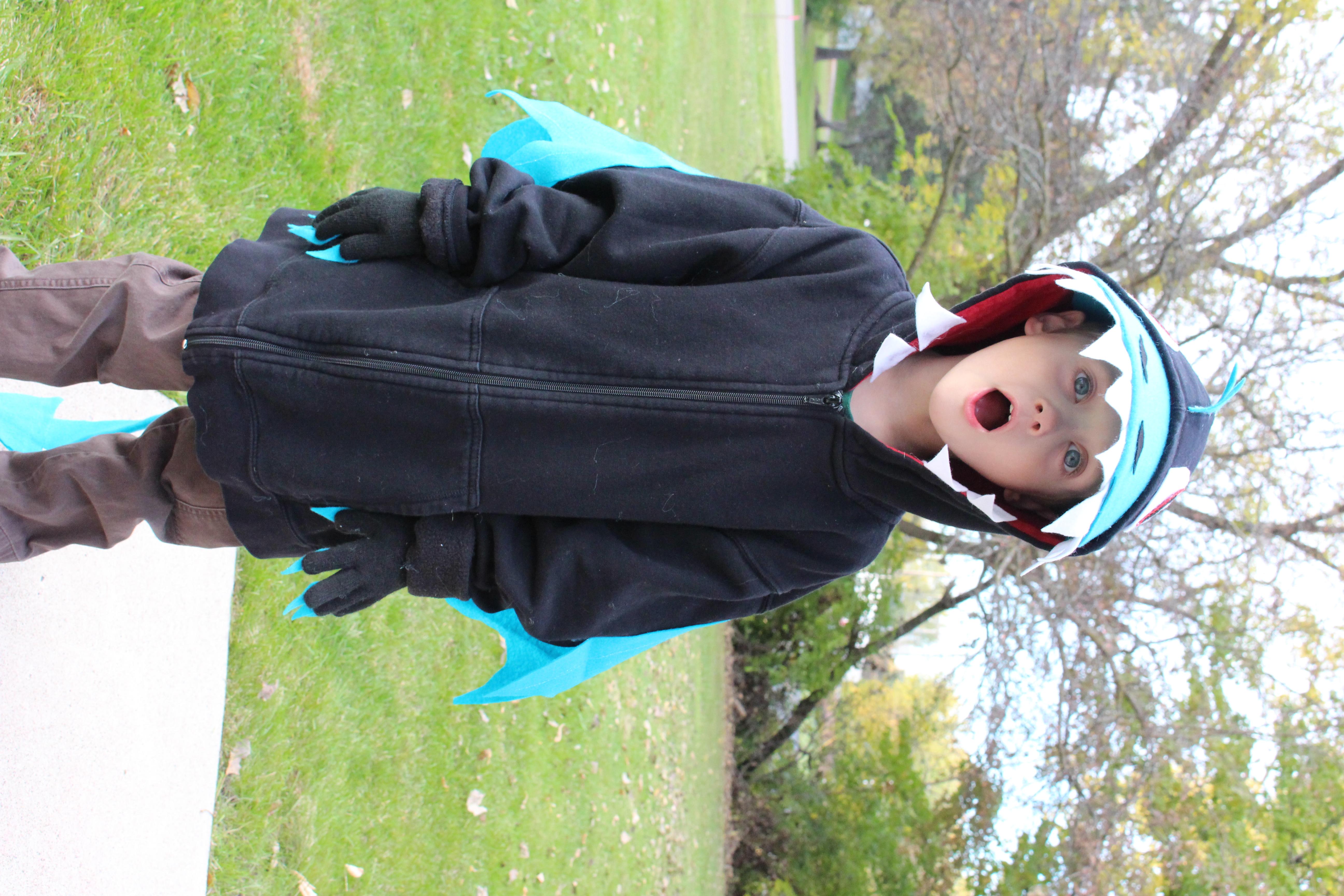 101 handmade costumes no sew dragon diy dragon costume solutioingenieria Choice Image
