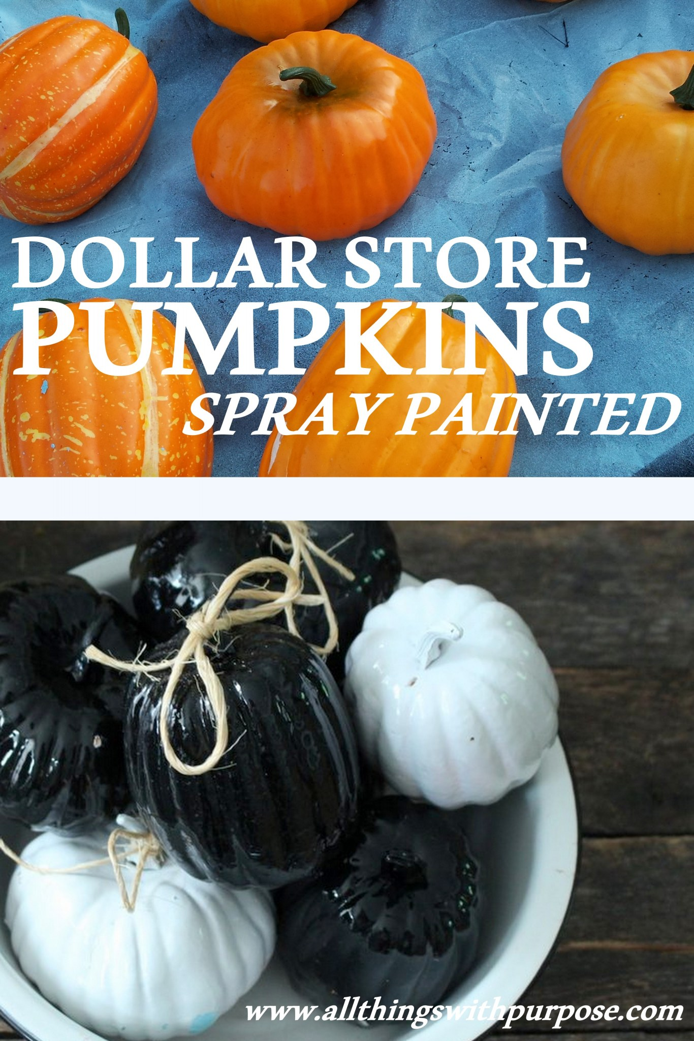 How to store pumpkins - W