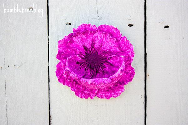 Backyard Flower Niche-1