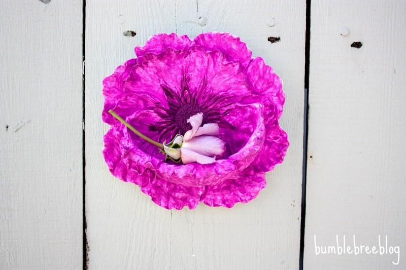 Backyard Flower Niche-11