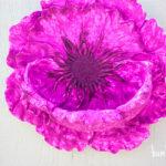 Backyard Flower Niche