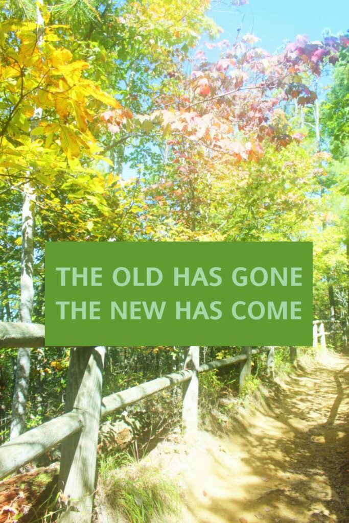 OLD HAS GONE