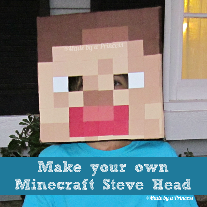 minecraft-steve-head costume
