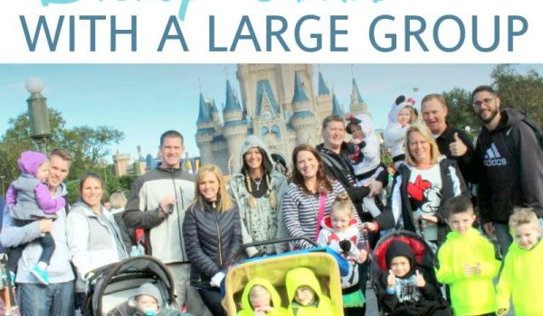 Visiting Disney World with a Large Group