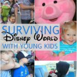 http://allthingswithpurpose.com/wp-content/uploads/2016/03/SURVIVING-DISNEY-WORLD-150x150.jpg