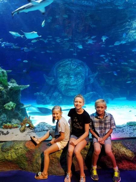 Homeschool Days at Legoland and Sea Life Michigan 2