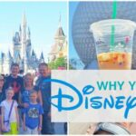 15 Reasons You Should Use a Disney Travel Agent