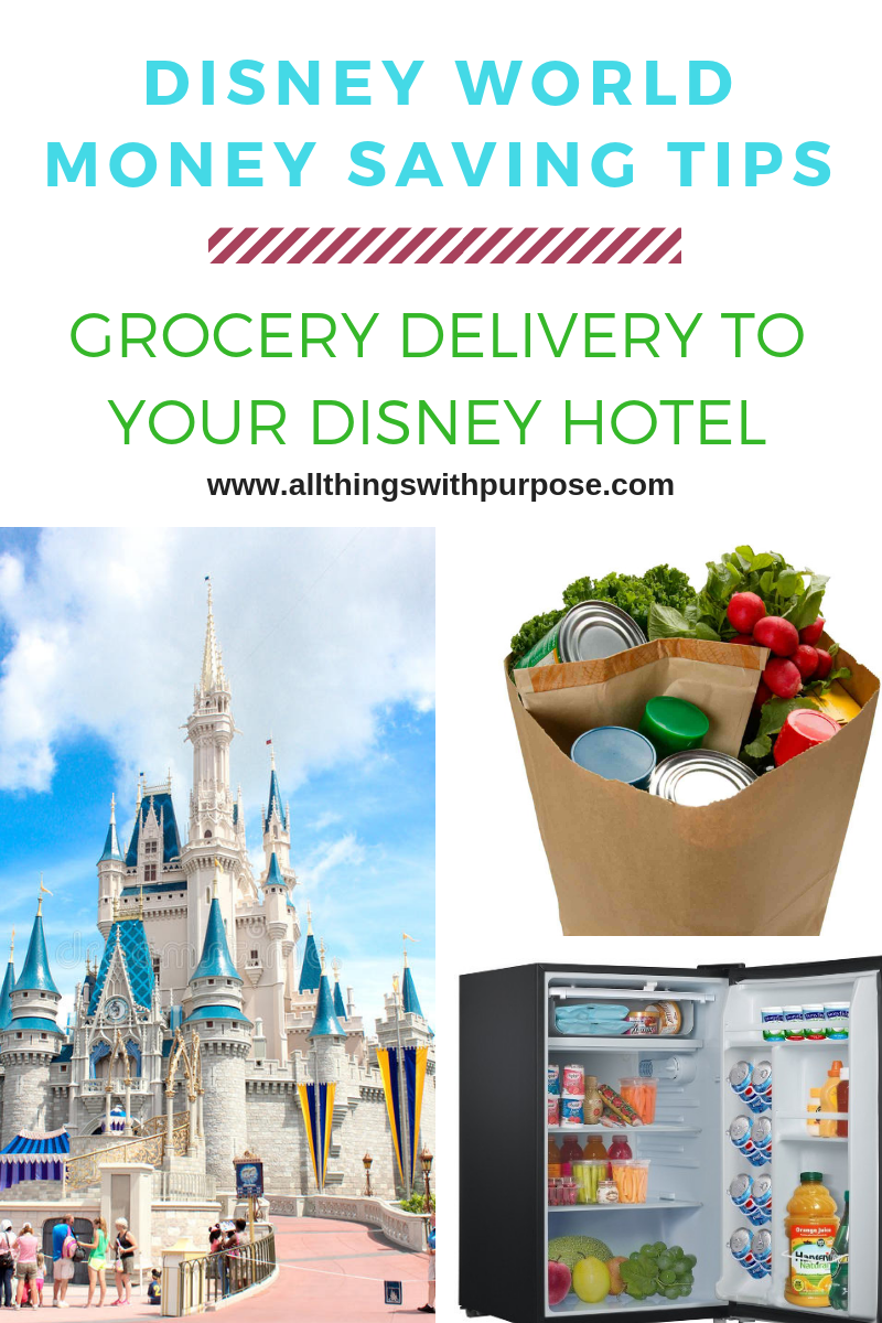 https://www.allthingswithpurpose.com/wp-content/uploads/2018/10/Groceries-at-Disney-World-1.png
