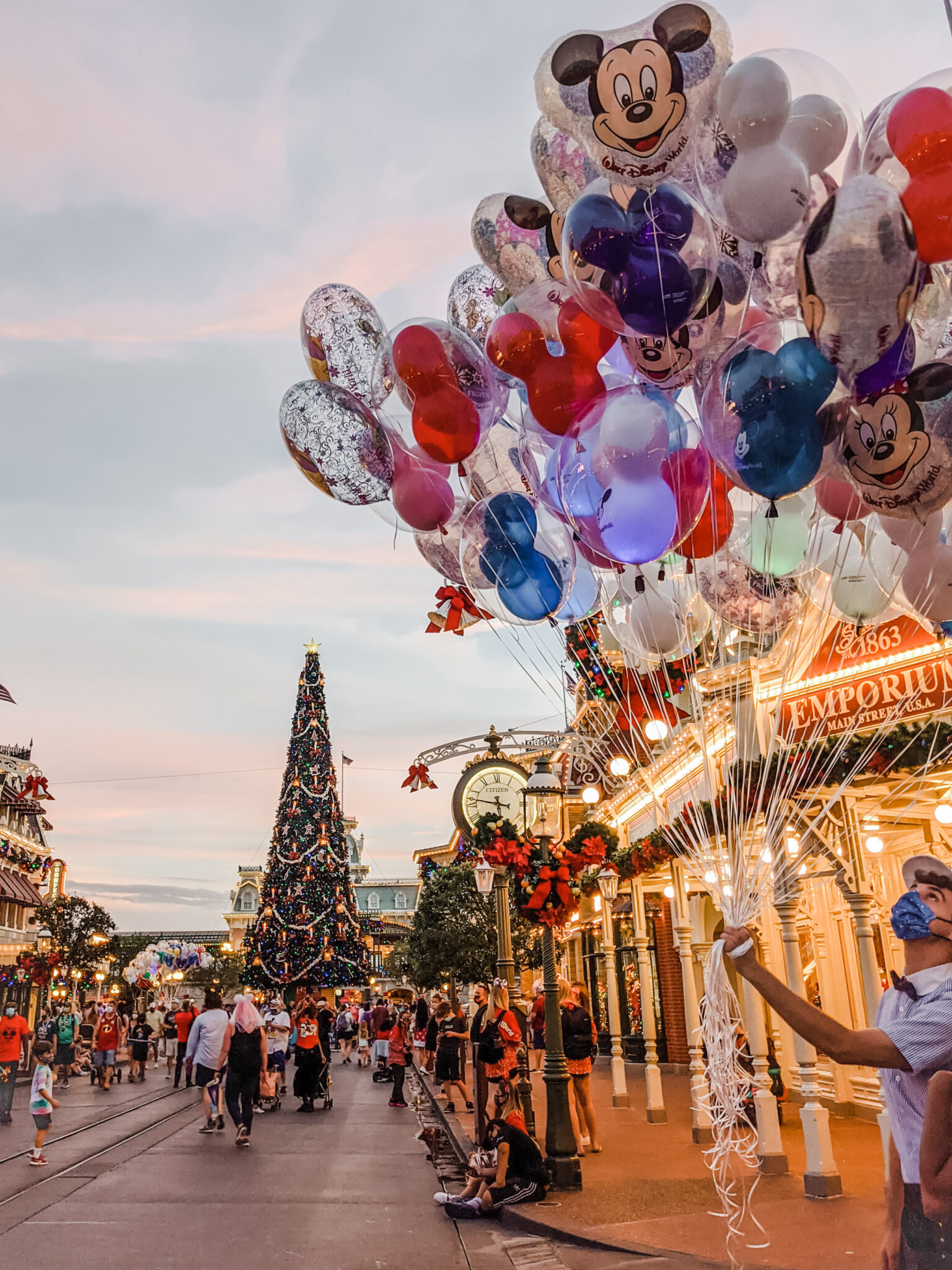 Should You Visit Disney World During the Pandemic? All Things with Purpose Sarah Lemp