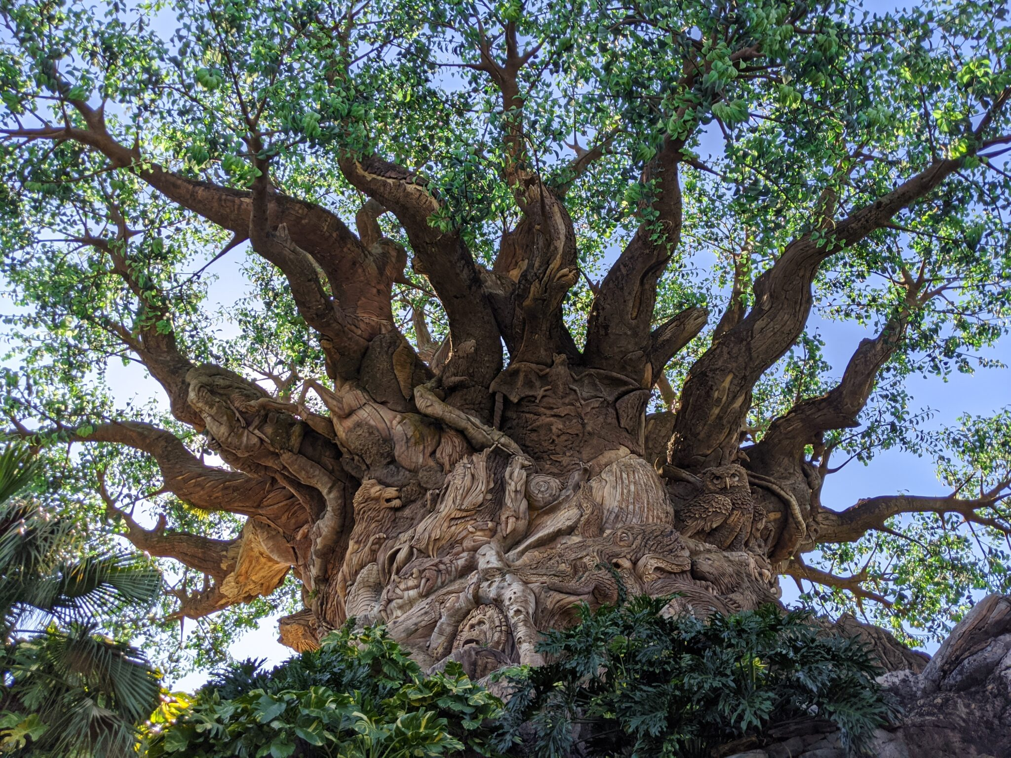Best Spots for Photos at Walt Disney World All Things with Purpose Sarah Lemp 8